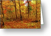 Abstract Impressionism Photo Greeting Cards - Autumns Magic Greeting Card by Bill Morgenstern