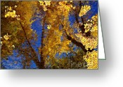 Wild Rivers Greeting Cards - Autumns Reflections Greeting Card by Steven Milner