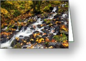 Gorge Greeting Cards - Autumns Staircase Greeting Card by Mike  Dawson