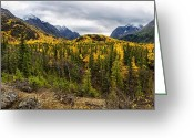 Snow Capped Photo Greeting Cards - Autumns Vista Greeting Card by Ed Boudreau