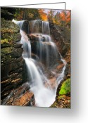 Autumn Scenes Greeting Cards - Avalanche Falls - Franconia Notch Greeting Card by Thomas Schoeller