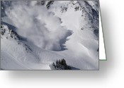 Winter Trees Photo Greeting Cards - Avalanche IV Greeting Card by Bill Gallagher