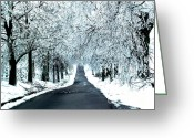 Winter Road Greeting Cards - Avenue of Icy Oaks Greeting Card by Gina Collins
