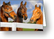 Horse Greeting Cards - Awaiting Home Greeting Card by Elzire S