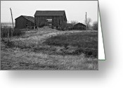 Black And White Barn Greeting Cards - Awaiting Winter Greeting Card by Steve Harrington