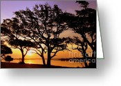 Inland Greeting Cards - Awakening Greeting Card by Karen Wiles
