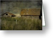 Vintage Photographs Greeting Cards - Away From Concrete  Greeting Card by Jerry Cordeiro