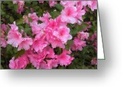 Althea Greeting Cards - Azalea watercolor  Greeting Card by Fred Jinkins