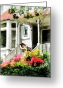Suburbs Greeting Cards - Azaleas by Porch With Wicker Chair Greeting Card by Susan Savad