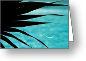 Palm Leaf Greeting Cards - Azure Palm Greeting Card by Michelle Wiarda