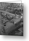 All-metal Greeting Cards - B24 War Bird Assembly 1943 Greeting Card by Padre Art