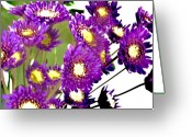 Flower Still Life Prints Greeting Cards - Baby Purple Daisies Greeting Card by Marsha Heiken