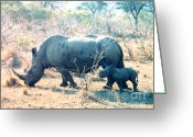 Cute Rhinoceros Greeting Cards - Baby Rhinoceros and Mother Greeting Card by Jerome Stumphauzer