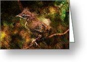 Larry Walker Greeting Cards - Baby Wren First Fly Greeting Card by J Larry Walker