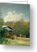 Bales Greeting Cards - Back At The Barn Again Greeting Card by Jan Amiss Photography