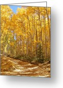 Autumn Roads Greeting Cards - Back Roads Of Autumn Greeting Card by Kara Kincade