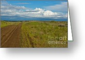  Beve Brown-clark Greeting Cards - Back Roads Greeting Card by Reflective Moments  Photography and Digital Art Images