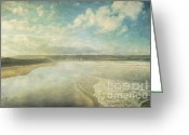 Atlantic Ocean Greeting Cards - Back Strand 6 Greeting Card by Marion Galt