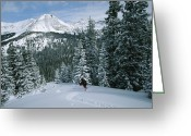 Precipitation Greeting Cards - Backcountry Skiing Into An Evergreen Greeting Card by Tim Laman