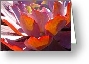 Cactus Flower Digital Art Greeting Cards - Backlit Afterglow Succulent Greeting Card by Amy Vangsgard