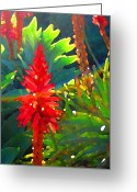Cactus Flower Digital Art Greeting Cards - Backlit Aloe Arborescens Greeting Card by Amy Vangsgard