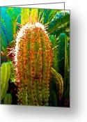 Succulents Greeting Cards - Backlit Cactus Greeting Card by Amy Vangsgard
