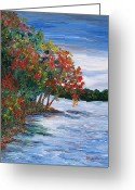 Mississippi River Scene Greeting Cards - Backwaters of the Mississippi  Greeting Card by Linda  Steine