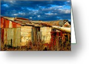 Shed Greeting Cards - Backyard Australia Greeting Card by Tim Nichols