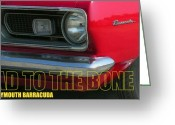 Barracuda Greeting Cards - Bad To The Bone Greeting Card by Richard Rizzo