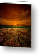 Comforting Greeting Cards - Balance Greeting Card by Phil Koch
