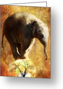 Zoo Greeting Cards - Balance Greeting Card by Trudi Simmonds