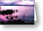 Backlit Painting Greeting Cards - Balaton by night Greeting Card by Odon Czintos