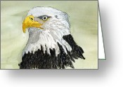 Eagle Drawings Greeting Cards - Bald Eagle Greeting Card by Eva Ason