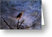 Reelfoot Lake Digital Art Greeting Cards - Bald Eagle In Suspense Greeting Card by J Larry Walker