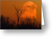 Larry Walker Greeting Cards - Bald Eagle Spirit Of Reelfoot Lake Greeting Card by J Larry Walker
