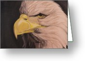 Eagle Pastels Greeting Cards - Bald Eagle Greeting Card by Wil Golden