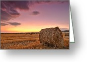 Bales Greeting Cards - Bales At Twilight Greeting Card by Evgeni Dinev
