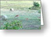 Rose Bushes Greeting Cards - Bambi And The Twins  Greeting Card by Will Borden