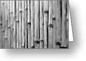 Fence Row Greeting Cards - Bamboo Fence Greeting Card by George Imrie Photography