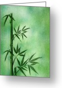 Style Mixed Media Greeting Cards - Bamboo Greeting Card by Svetlana Sewell