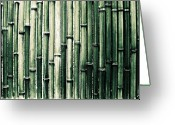 Bamboo Greeting Cards - Bamboo Wall Greeting Card by M.taka