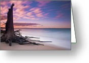 Queensland Photo Greeting Cards - Barbie Island Greeting Card by Kush Chadda - Piktuersque Images