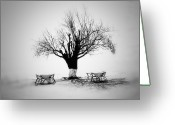 Bare Tree Greeting Cards - Bare Tree Greeting Card by YongJun Qin