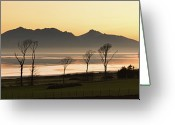Bare Tree Greeting Cards - Bare Trees At Coast Greeting Card by Image by Peter Ribbeck