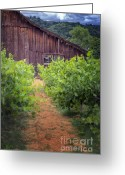 Wooden Fence Greeting Cards - Barn 1296 Greeting Card by Joan Carroll