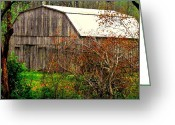 Trish Greeting Cards - Barn in spring Greeting Card by Trish Clark