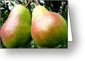 Two Pears Greeting Cards - Bartlett Beauties Greeting Card by Will Borden