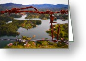 Guatape Greeting Cards - Bartok Greeting Card by Skip Hunt