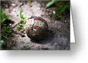 Sports Art Photo Greeting Cards - Baseball Greeting Card by John Rizzuto