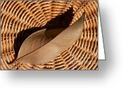 Earth Tone Greeting Cards - Basket Of Brown Greeting Card by Dan Holm